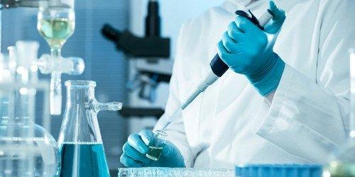 Catalisadores químicos e bioquímicos